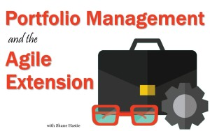 Portfolio Management and the Agile Extension to the BABOK