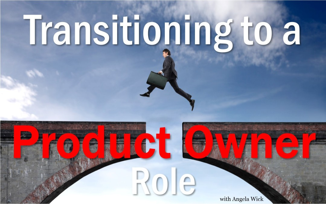 Transitioning to a Product Owner Role