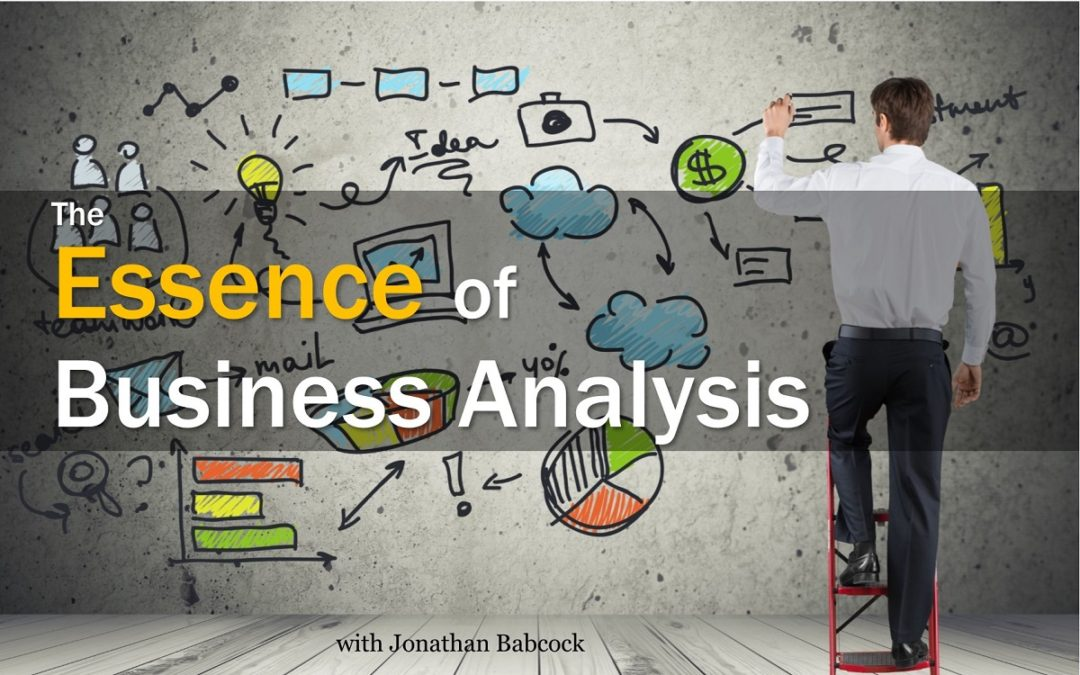 The Essence of Business Analysis