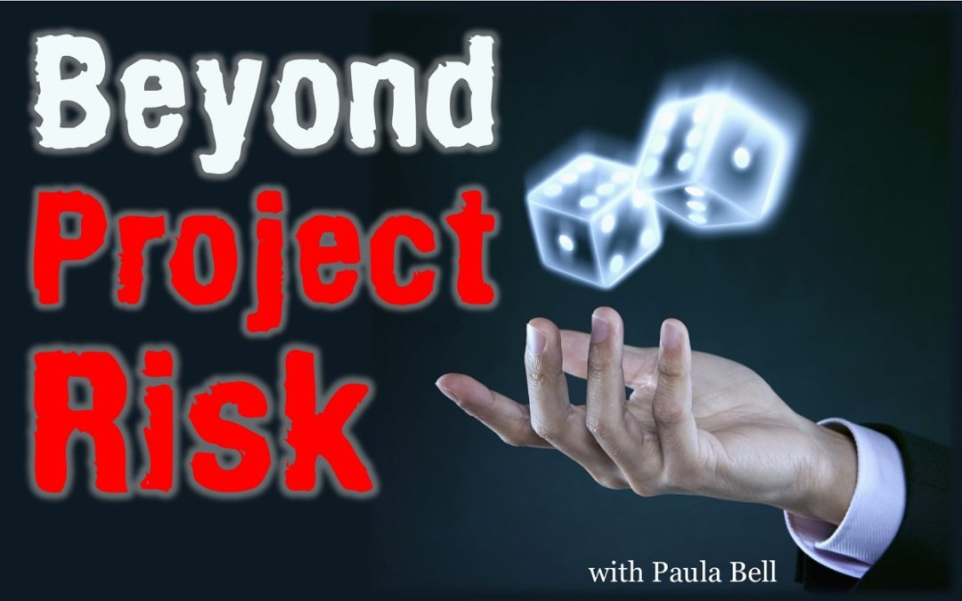 Beyond Project Risk