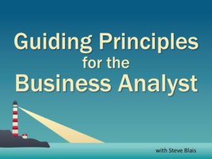 Guiding Principles for the Business Analyst