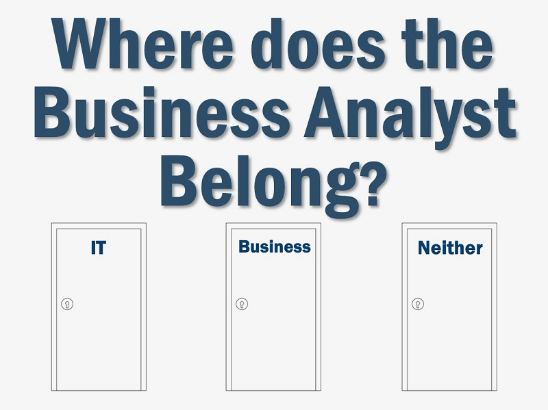 Where should the Business Analyst reside in an organization?