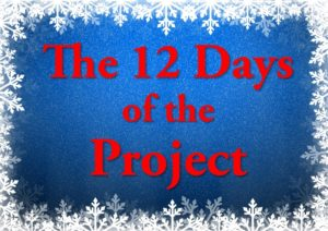 12 Days of the Project