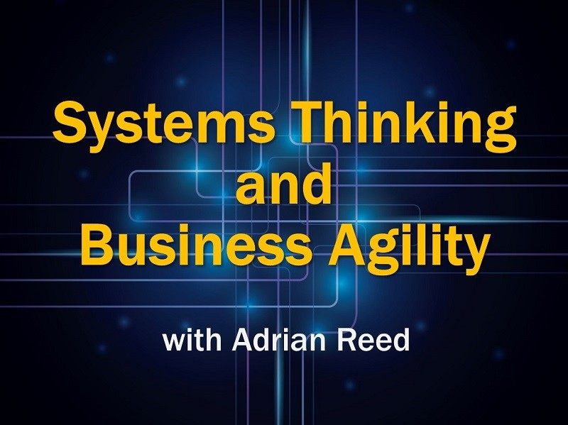MBA221: Systems Thinking and Business Agility