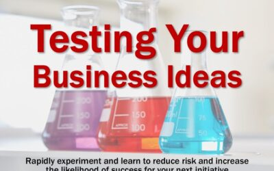 MBA222: Testing Your Business Ideas